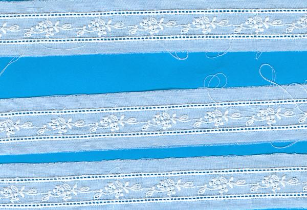 Capitol Imports Swiss Embroidery 72630 White Lace