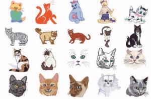 Dakota Collectibles 970083 Cuddly Cats Home Format Multi-Formatted CD