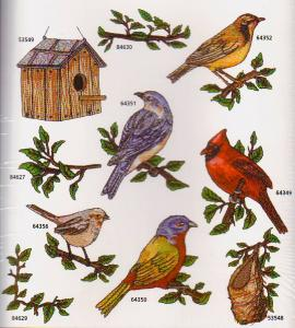 Amazing, Designs, Great, Notions, 1295, Birds, Collection, III, Multi, Formatted, CD