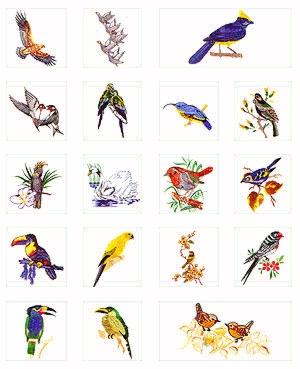 Pfaff No. 45 Birds Embroidery Card