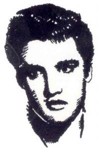 Amazing Designs PFMC EP1 Elvis Presley Pfaff Embroidery Design Card, Compatible With Pfaff 7570 and Creative Fantasy Pfaff 7560
