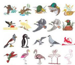 Stitchitize Embroidery Designs Birds Of A Feather Collection Multi Formatted Cd