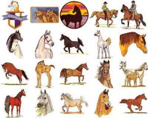 OESD 11101 Arabians Embroidery CD Design Pack