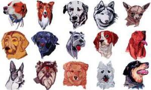 OESD 11052 Dogs 3 Embroidery CD Design Pack