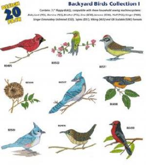 Amazing Designs 1234 Backyard Birds I Embroidery Disk