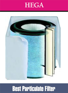 Austin Air FR405 Replacement Filter for Allergy Machine Air Purifier Cleaner