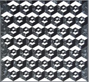 Sew Steady Westalee  Half Hexagon Illusions Pattern