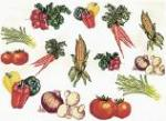 Balboa Threadworks 77M Vegetable Collection 1 5x7 Embroidery Disks
