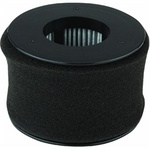 Bissell B-54A2 Filter, Power Edge 81L2T