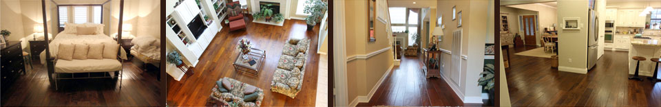 Hard Floor Vacuum Steamer Scrubber Cleaners