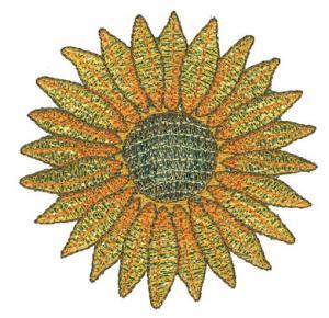 Amazing Designs Sensational Series FMM1 Floral Mylar Magic Card or CD