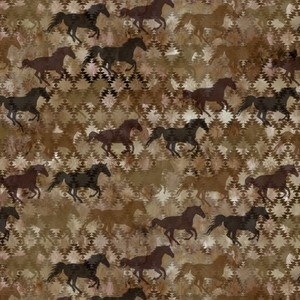 EE Schenck Southwest IBFSOU6SOU-1 Stallions Brown