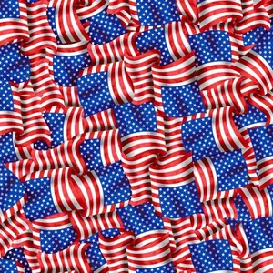EE Schenck Stars & Stripes Forever SEF5829-78 Packed Flags Multi