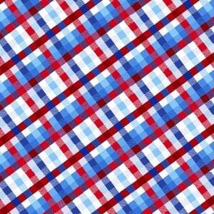 EE Schenck Stars & Stripes Forever SEF5827-78 Plaid Multi