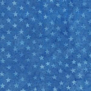 EE Schenck Freedom II ISB122046530 Stars