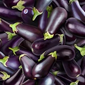 EE Schenck Food Festival ELS634-PUREggplant Purple