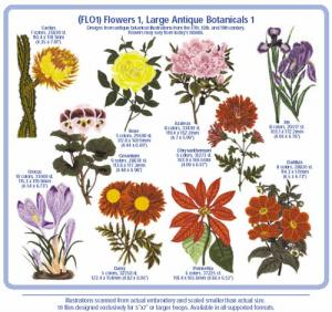 1211: Cactus Punch FLO1 Flowers 1 Large Antique Botanicals 1 Embroidery CD