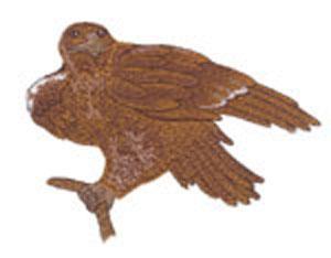9616: Amazing Designs ADC 5040 Jumbo Birds Of Prey II Multi-Formatted CD
