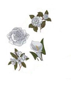 OESD PC823S Flowers Plus! By Helen Vladykina Embroidery Designs USB Stick  in ART, PES, PCS, DST, HUS, JEF, XXX, SEW, and EXP Formats