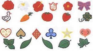 Elna MC10 Applique Envision Embroidery Card