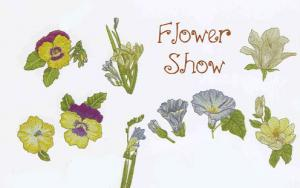 OESD 866 Flower Show Large Embroidery Designs Card