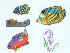 Dakota Collectibles 970059 Fancy Fins Fish Designs Multi-Formatted CD