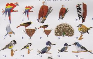 Elna MC116 Bird Designs Envision Embroidery Card SEW Format