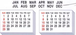 Elna MC105 Calendar Designs Envision Embroidery Card SEW Format