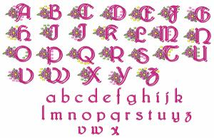 Great Notions 112434 Polka Dot Floral Alphabet, 2 Sizes Are Included Multi-Formatted CD-Roms,