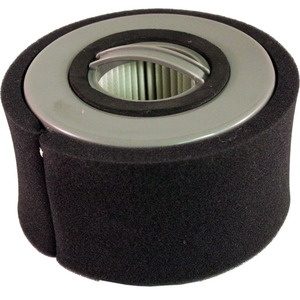 35493: Eureka E-79902-1 Filter, Dust Cup with Foam Dcf20 for 3040 3041 3042