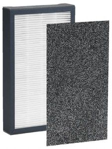 Guardian  FLT4100 HEPA Replacement Filter E  for AC4100