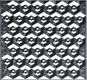 Sew Steady Westalee  Half Hexagon Illusions Pattern