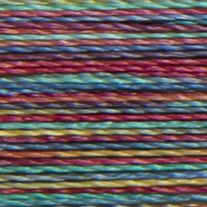 Isacord Variegated Multicolor Embroidery Thread 9916 Rainbow  2579-9916 Polyester 1000m Spool