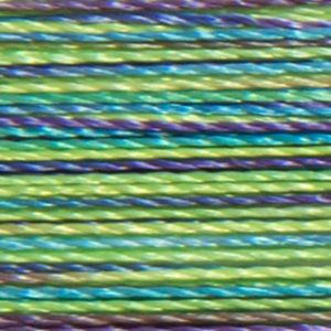 Isacord Variegated Multicolor Embroidery Thread 9971 Emerald City  2579-9971 Polyester 1000m Spool