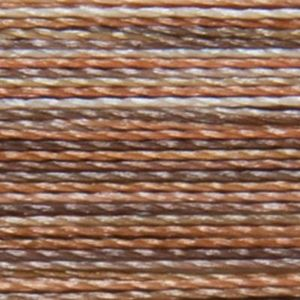 Isacord Variegated Multicolor Embroidery Thread 9302 Bark  2579-9302 Polyester 1000m Spool