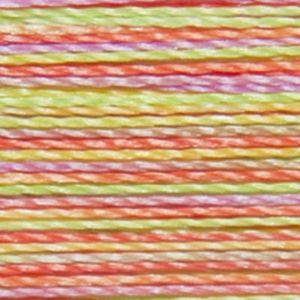 Isacord Variegated Multicolor Embroidery Thread 9914 Neon Brights  2579-9914 Polyester 1000m Spool