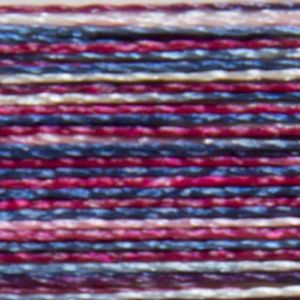 Isacord Variegated Multicolor Embroidery Thread 9918 OL Glory  2579-9918 Polyester 1000m Spool