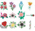 Stitchitize Embroidery Designs Floral Gardening  Collection Multi Formatted Cd