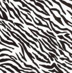 Fabric Finder 999 Zebra Print 15 Yd Bolt 9.34 A Yd 100% Pima Cotton Fabric